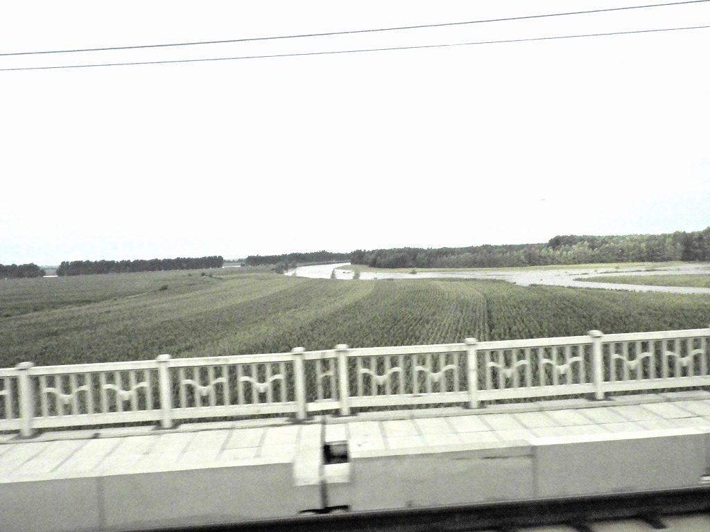 列車から見た東北の田園地帯